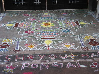 Kolams and Pongal 2008 115