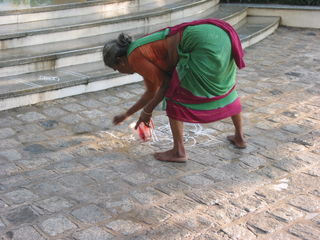 Kolams and Pongal 2008 085