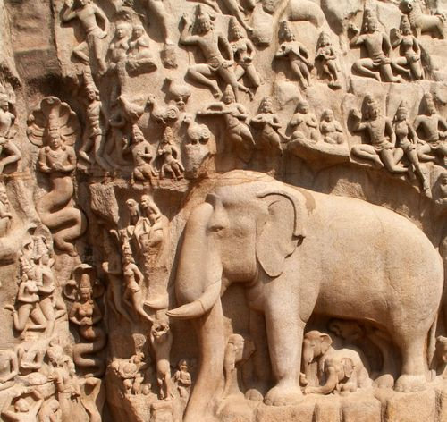 Elephant close-up - Arjuna's Penance