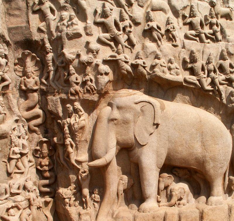 Elephant close-up - Arjuna's Penance