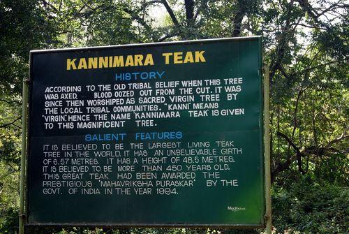 Kannimara sign
