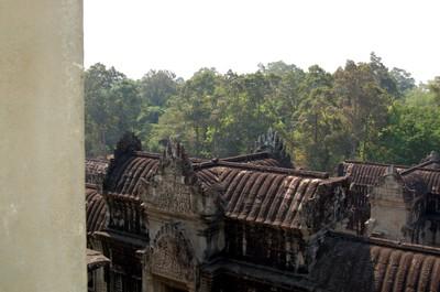 Angkor_wat_treetops_from_atop